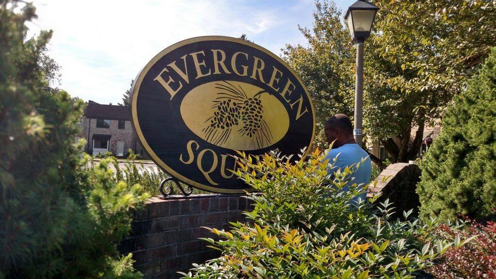 evergreen square